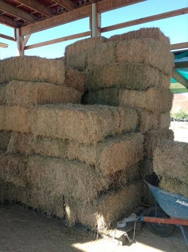 52 bales of hay!